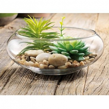 Item 1787814 - Bình hoa thủy tinh Dish Garden ĐK 20cm