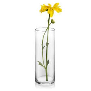 Item 1798157 - Bình hoa thủy tinh Cylinder, 15